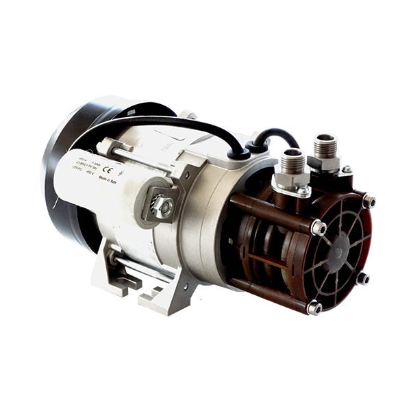 POMPA C/MOTORE 220V 150 L/H BYPASS NORM 15BAR